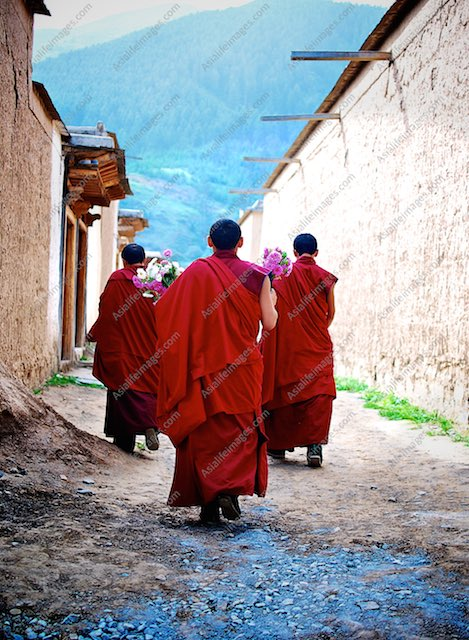 Monks in Xiahe Monastery