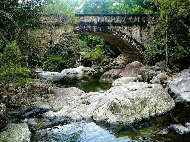 Bridge crossing a river in the bush